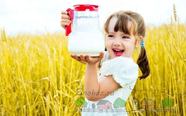 Дівчинка на поле з графином молока