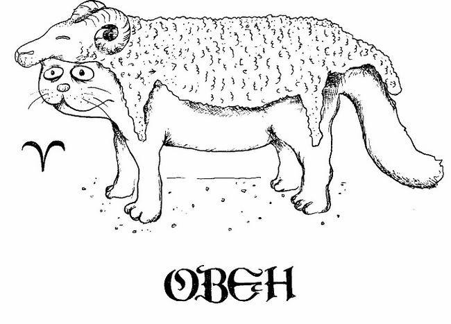 Котячий гороскоп: як впливають зірки на характер домашнього вихованця