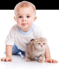 Кішка і дитина