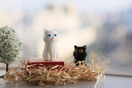 кішки флешки