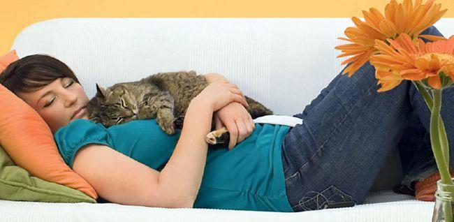 людина і кішка