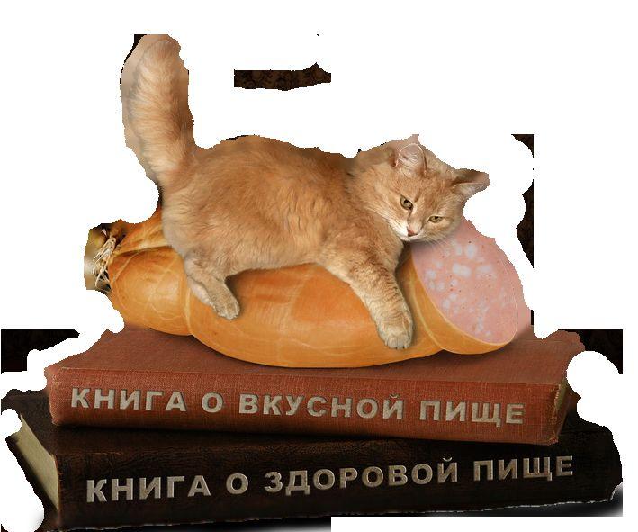 котлета для кішки