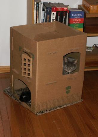 Котедж для кішки з коробки