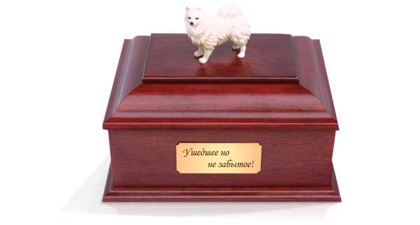 Кремація тварин: останній прояв турботи про вихованця