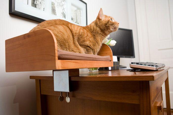 Лежанка для кішки