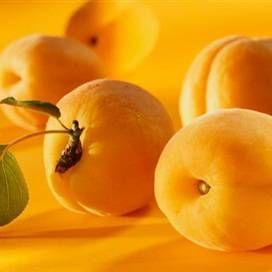 Масло абрикосових кісточок: склад, корисні властивості, застосування