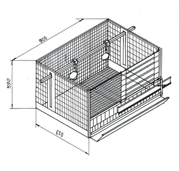 Приклад секції для 2-3 курей