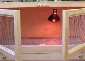 Майстер-клас з виготовлення комфортного брудера для курчат