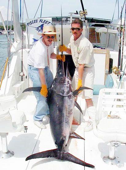 Меч-риба на палубі судна