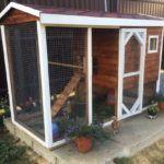 Оригінальний міні-пташник у дворі