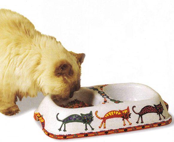 Миска для кішки своїми руками