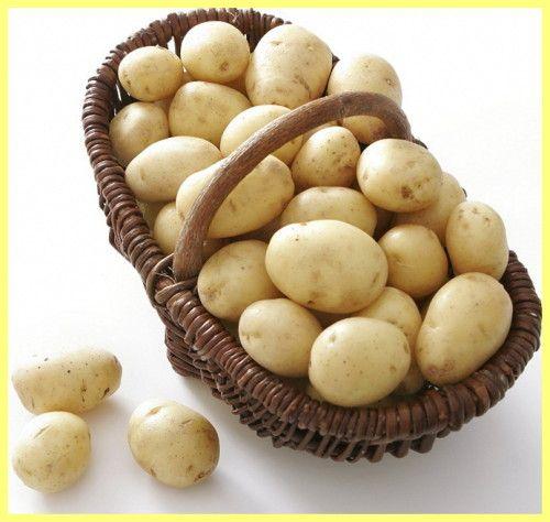 Як вибрати якісну картоплю