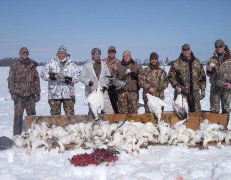 Полювання на гусака по снігу