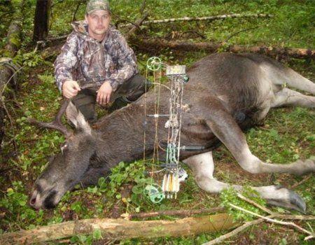 Полювання на лося з арбалетом