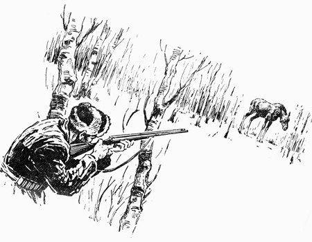 Полювання на лося за допомогою петлі