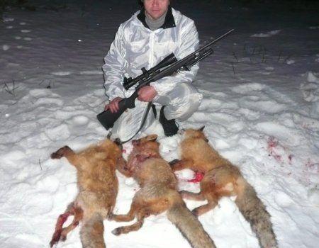 Полювання на зайця і лисицю з нарізною зброєю