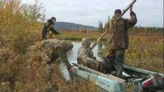 Полювання з під`їзду на ниркових качок: чернь, саука, сіньга