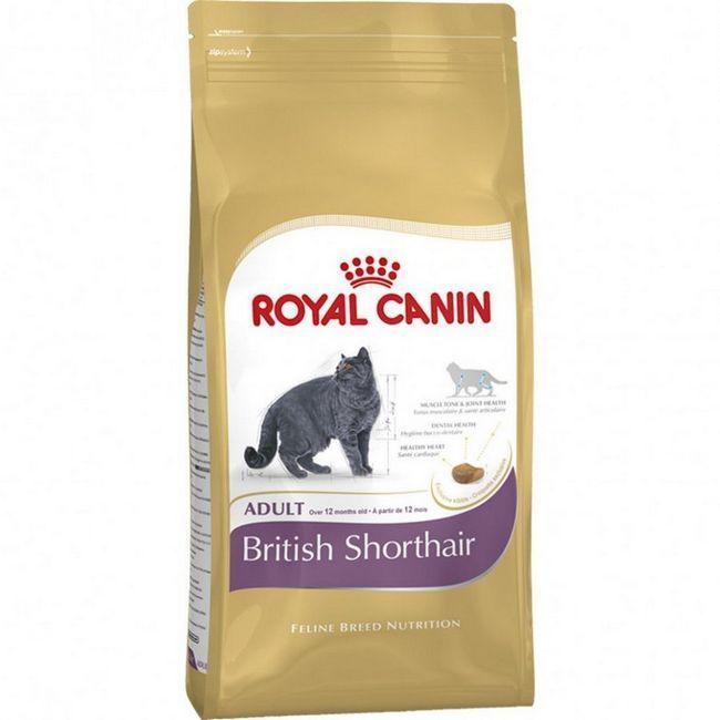 Роял Канін для британських кішок підійде для годування скоттиш фолда