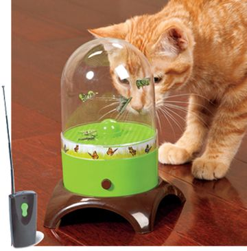 Flying Fun Interactive Cat Toy