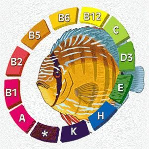 Користь вітамінів для акваріумних рибок