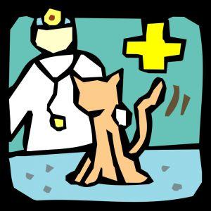 відвідування ветеринара