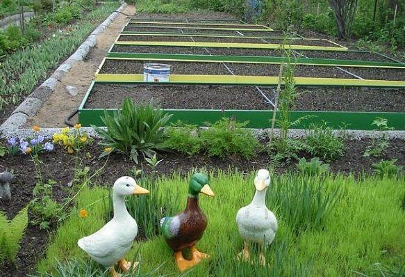 Підвищення родючості грунту і поліпшення земель