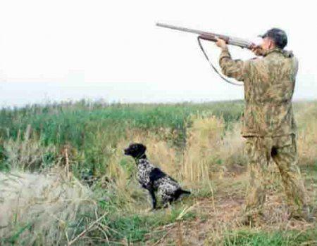 Правила полювання російської федерації