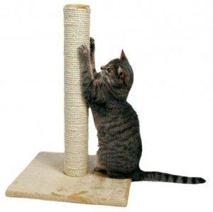 Привчаємо кішку до когтеточке