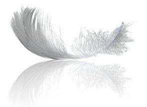 Пух і пір`я - використовуємо гусячі дари