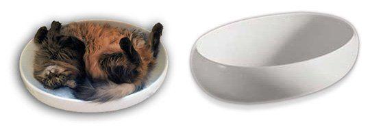 Раковина для кота