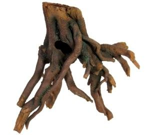 коренева деревина