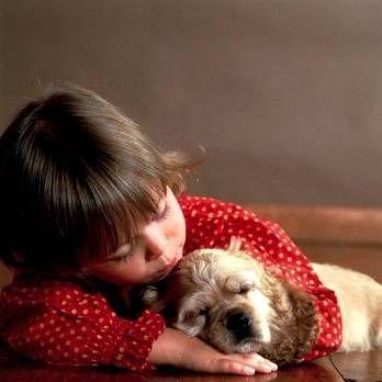 Дитина і собака: правила і безпеку спільного існування