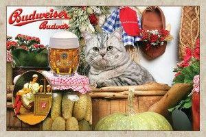 Ресторан з британськими кішками