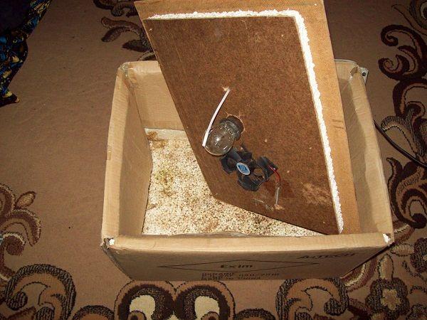 Простий інкубатор з картонної коробки