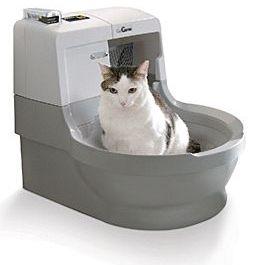 Самоочисний туалет для кішки