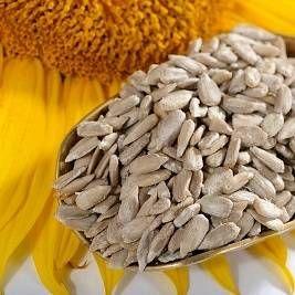 Насіння соняшнику: особливості продукту, склад, корисні властивості і протипоказання