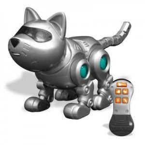 Сенсори кішок