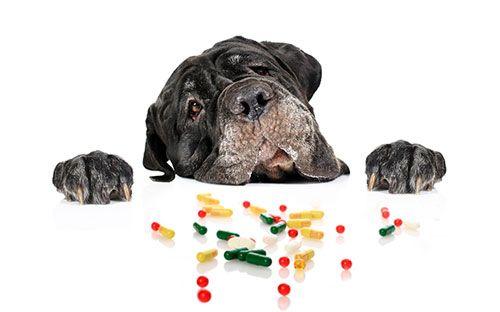 отруєння лікарськими препаратами