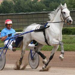 Вершник і кінь з гойдалкою