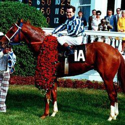 Секретаріат - легендарна кінь Америки