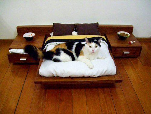 Спальня для кішки