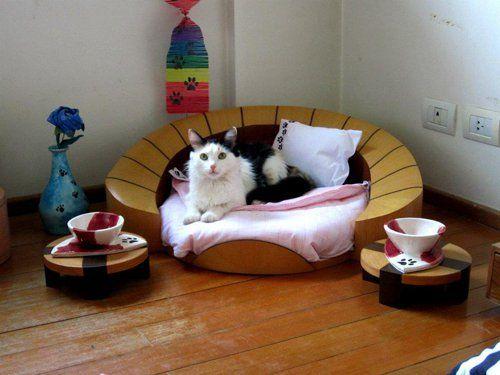 Спальний гарнітур для кішки
