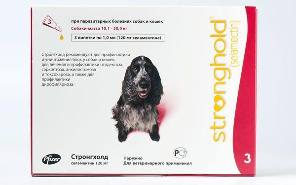 Стронгхолд для собак: препарат подвійної дії