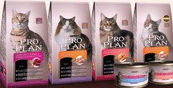 Корм для кішок Pro Plan