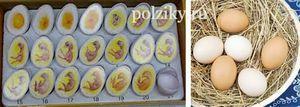 Інкубація курячих яєць - режим