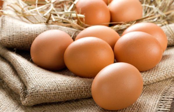Тонкощі закладки яєць в інкубатор: перевіряємо наявність зародка