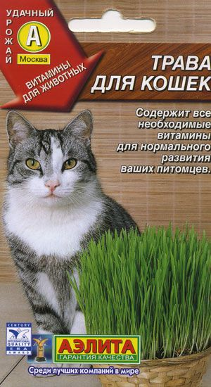 Травка для кішок