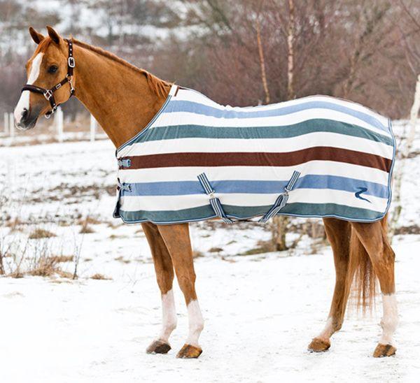 Попона на коні