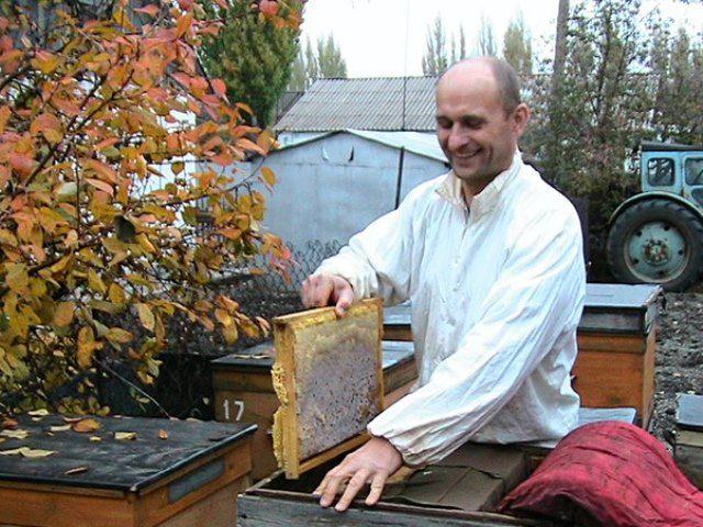 Уроки бджільництва від кривчикова
