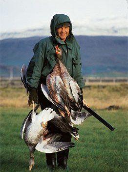 Весняне полювання на гусей